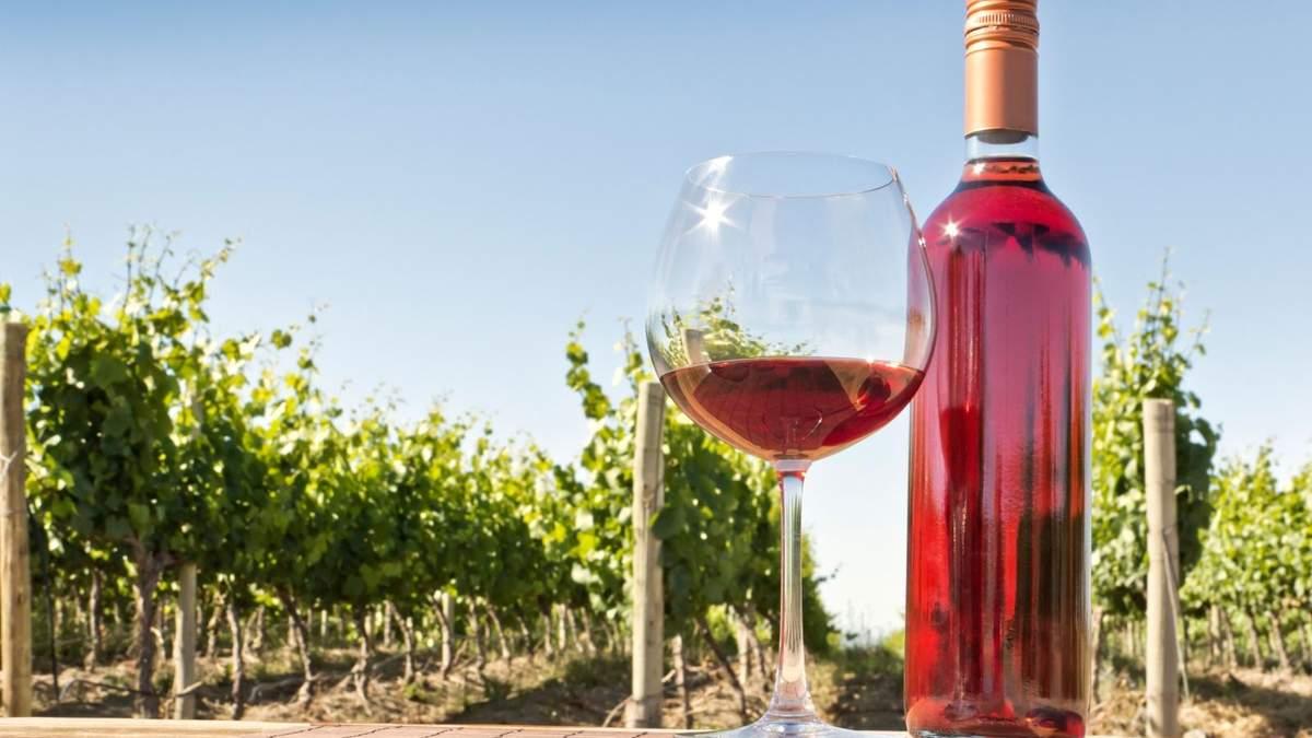 Розовое вино: особенности, характеристики, как пить розовое вино