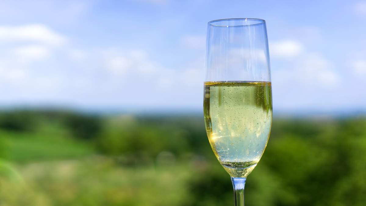 Шампанское, игристое вино: интересные факты