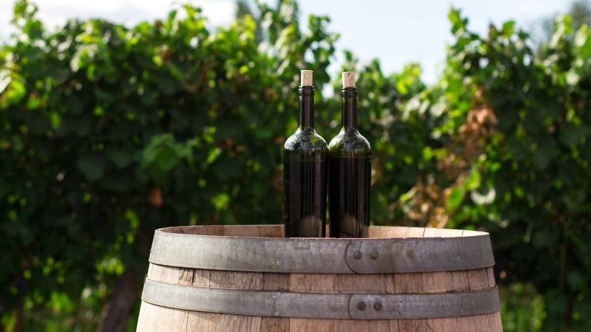 Мінеральне та хрустке: чому сомельє так незвично описують вино
