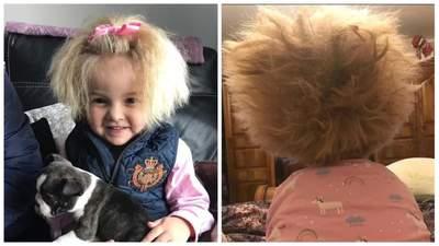Дівчинку в мережі порівнюють з Айнштайном: все через її пухнасте волосся