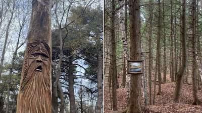 10 незвичних речей, які люди побачили в лісі: цікаві фото