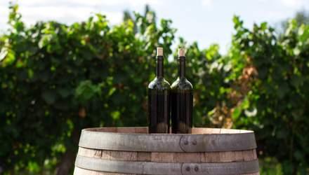 Сталь чи дубова діжка: як витримка впливає на вино