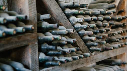 Які вина підходять для довгого зберігання: список і терміни
