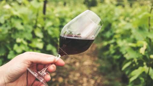 10 тисяч доларів на місяць за любов до вина: у США відкрили цікаву вакансію