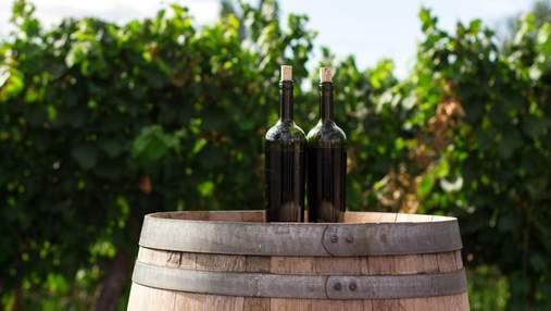 Минеральное и хрустящее: почему сомелье так необычно описывают вино