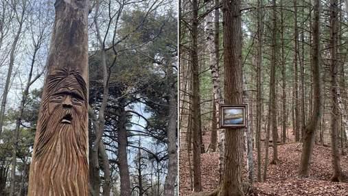 10 необычных вещей, которые люди увидели в лесу: интересные фото
